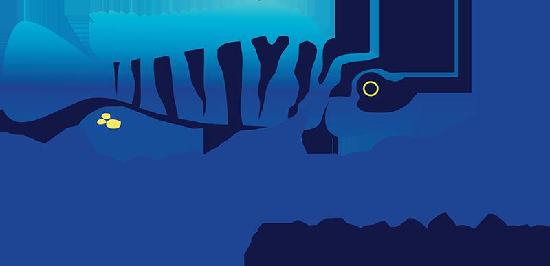 Malawi Travel Info Blue Zebra